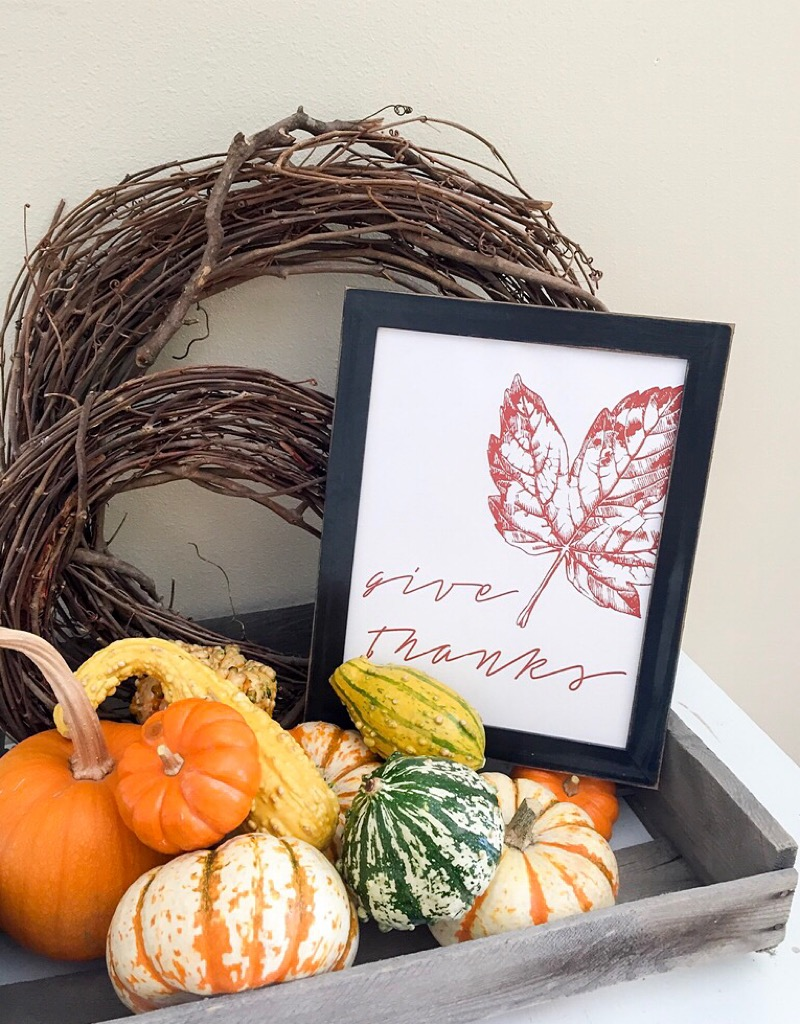 Give Thanks Free Fall Printable
